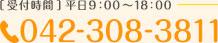 TEL: 042-308-3811